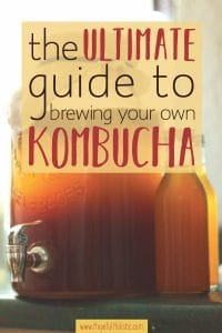 2-gallon jar and bottles of kombucha fermenting with text overlay - the ultimate guide to brewing your own homemade kombucha