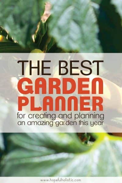 A yellow squash plant with text overlay- the best garden planner for creating and planning an amazing garden this year