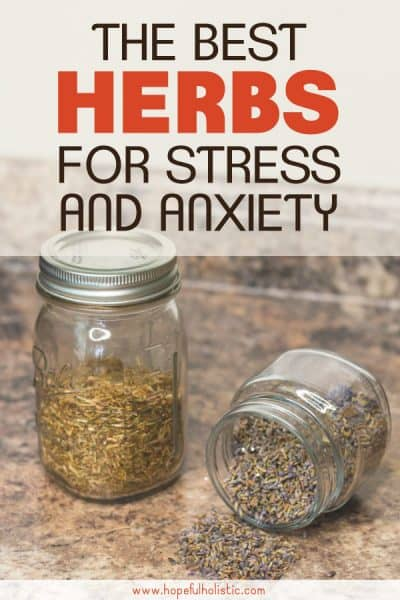 Dried lavender and st John's Wort herbs with text overlay- the best herbs for stress and anxiety
