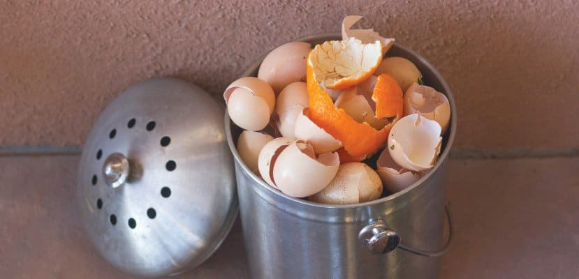 Stainless steel compost bucket with eggshells and orange peels