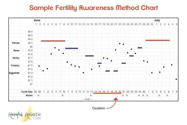 Fertility awareness method sample chart